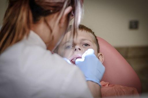 ortodonta lubin